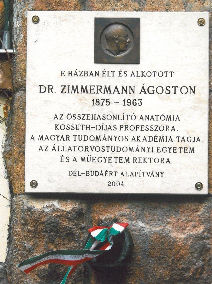Dr. Zimmermann Ágoston emléktábla