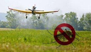 Dél-Budán is irtják a szúnyogokat